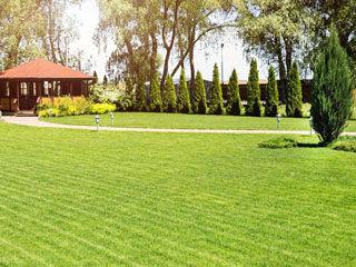 Lawn Care Oakdale MN